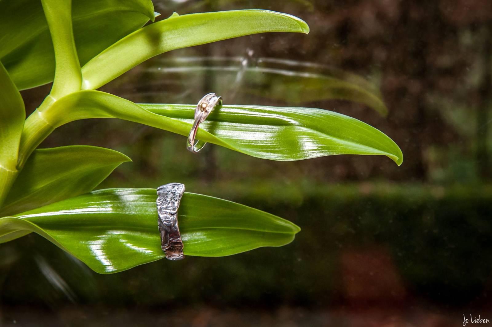 Nathalie Swinnen - Juwelen - Bruidsjuwelen - Verlovingsring - Trouwring - House of Weddings - 35