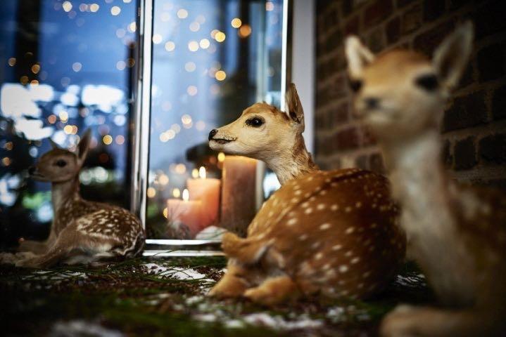 Présence Kerst -  House of Weddings - 3