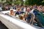 Alex VDB - House of Weddings - 2