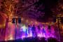 Solico - Licht & Geluid huwelijk - Audiovisueel - House of Weddings - 7