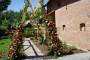VIVA Blooming - DSC00566 - House of Weddings