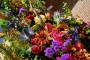 VIVA Blooming - DSC00570 - House of Weddings