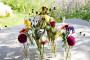 VIVA Blooming - DSC00790 - House of Weddings