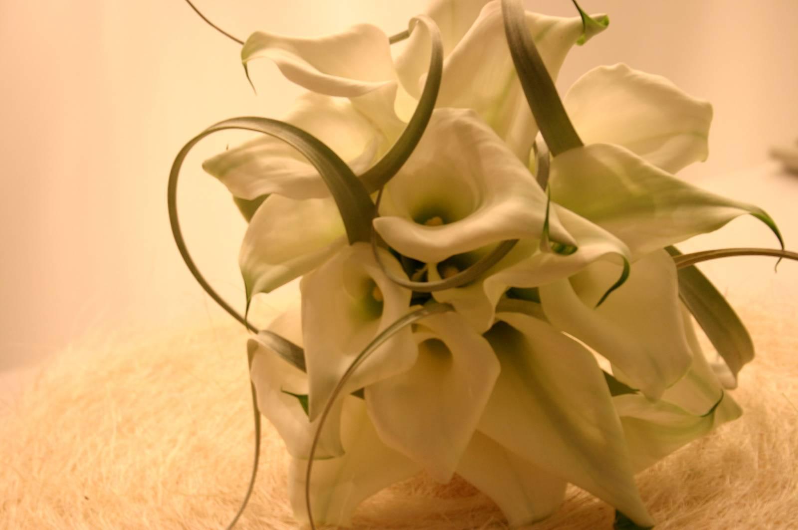 Ann Wieme - House of Weddings-03