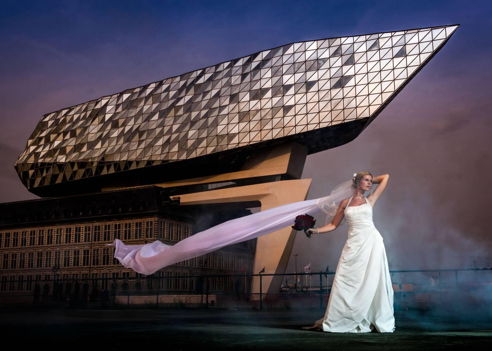 Foto Meeuw - House of Weddings - 32