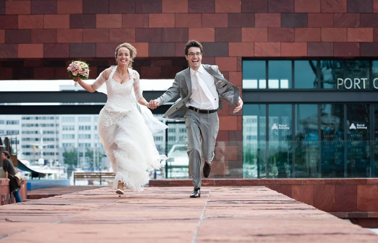 Foto Meeuw - House of Weddings - 4
