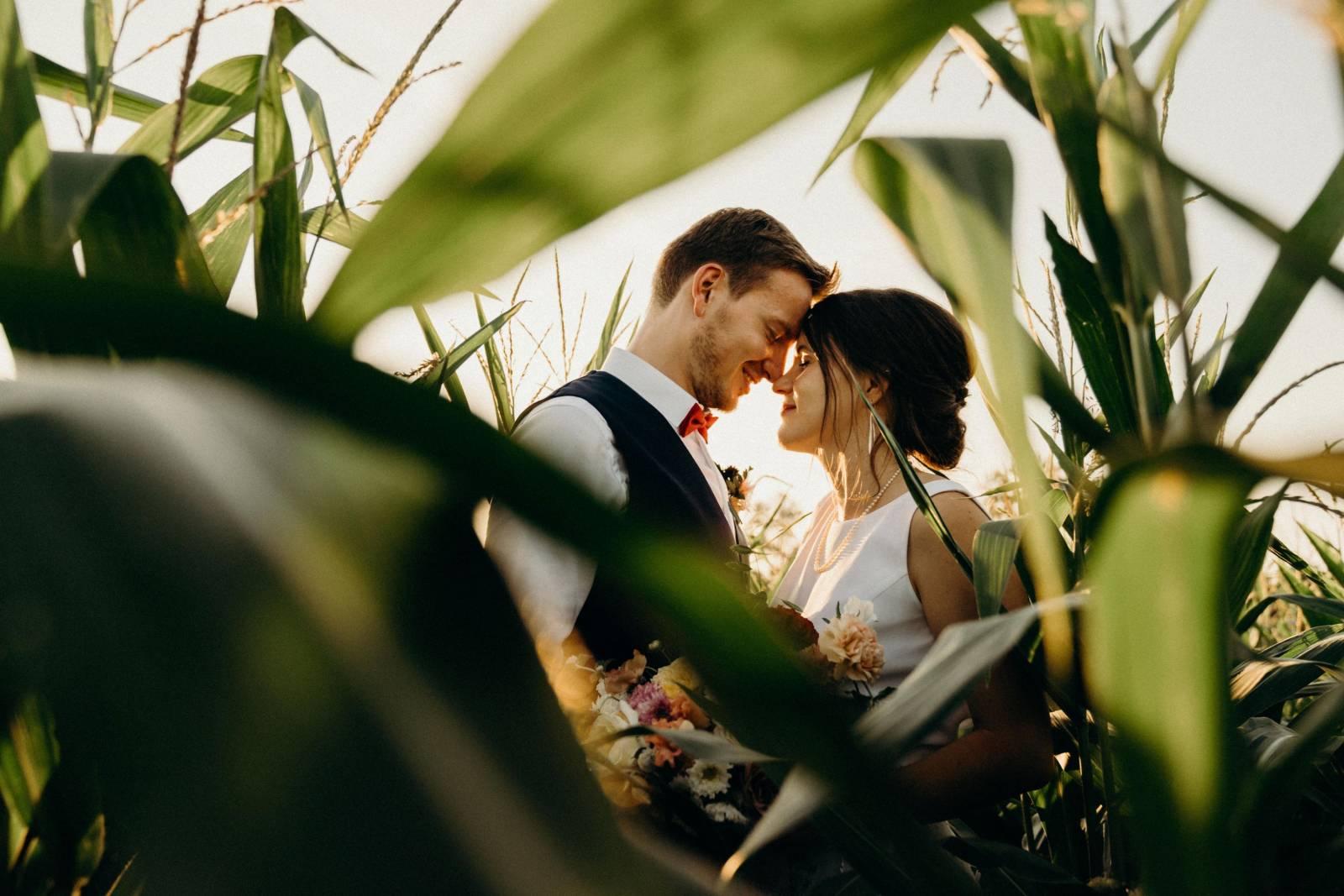 Frankie and Fish - Trouwfotograaf - Huwelijksfotograaf - Bruidsfotograaf - House of Weddings - 29