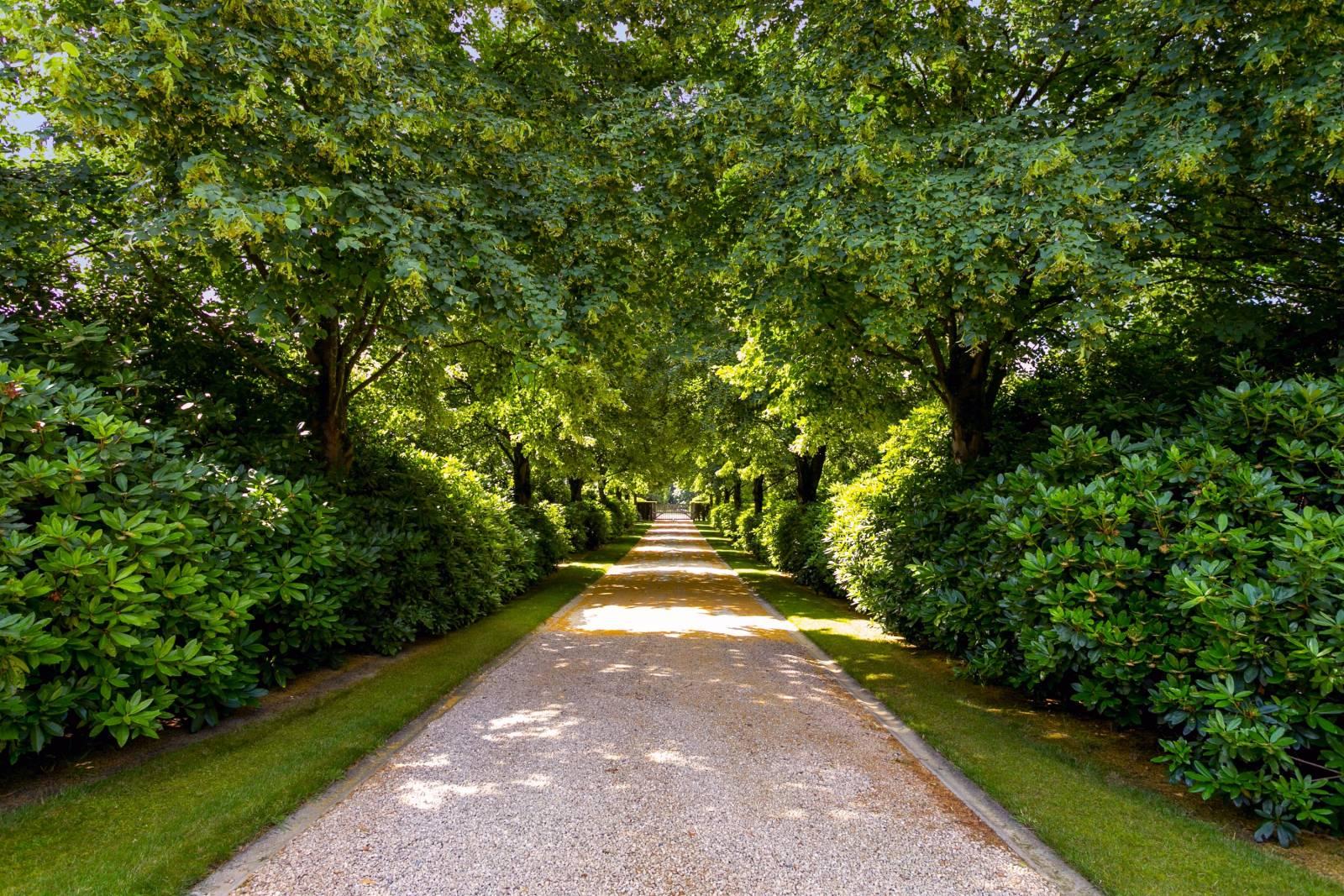 Louise Marie Manor Gardens - Feestzaal - House Of Weddings - 42