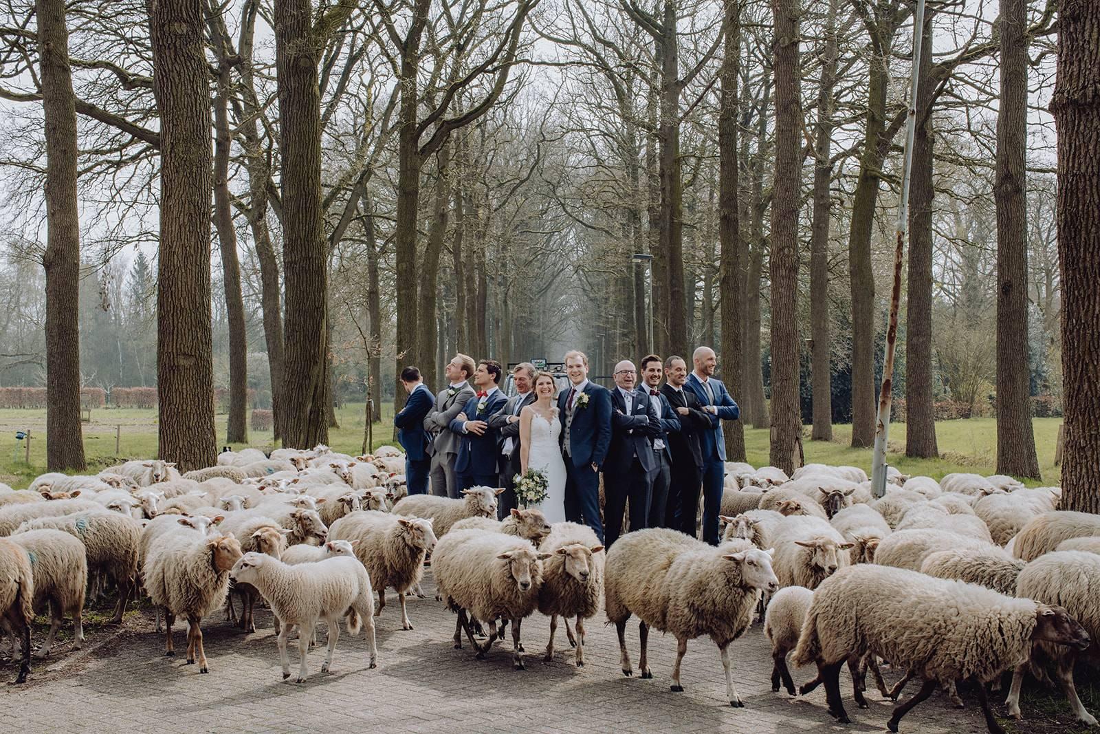 LUX Visual Storytellers - House of WeddingsEilRS5MF copy