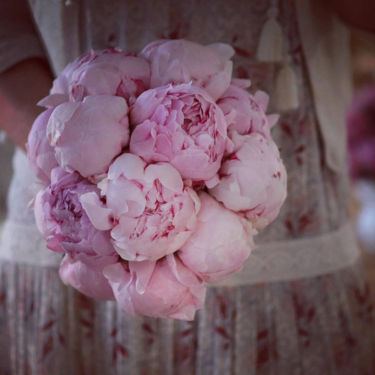 Maison Fleurie - Fotograaf zelfgetrokken - House of Weddings - 20