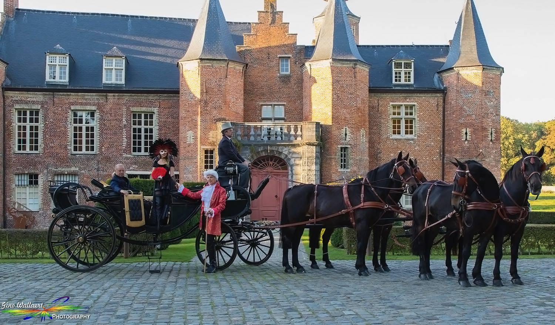 Manorhoeve - Paard en Koets - Vervoer - Ceremonievervoer - House of Weddings - 1