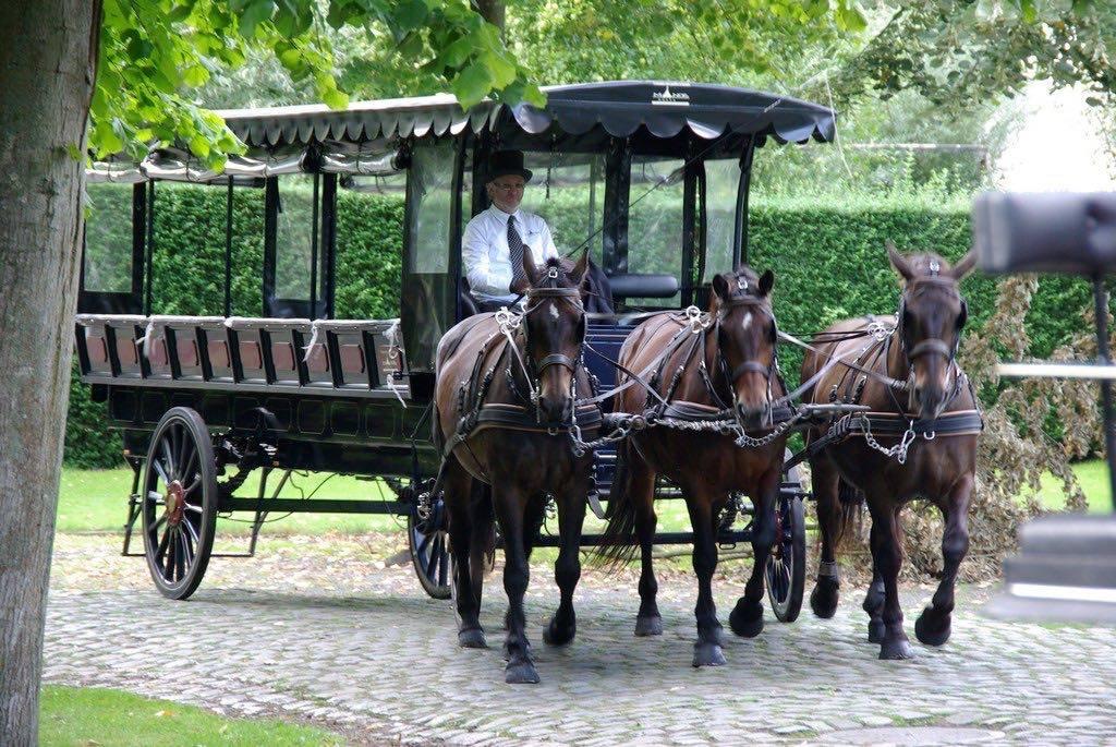 Manorhoeve - Paard en Koets - Vervoer - Ceremonievervoer - House of Weddings - 10