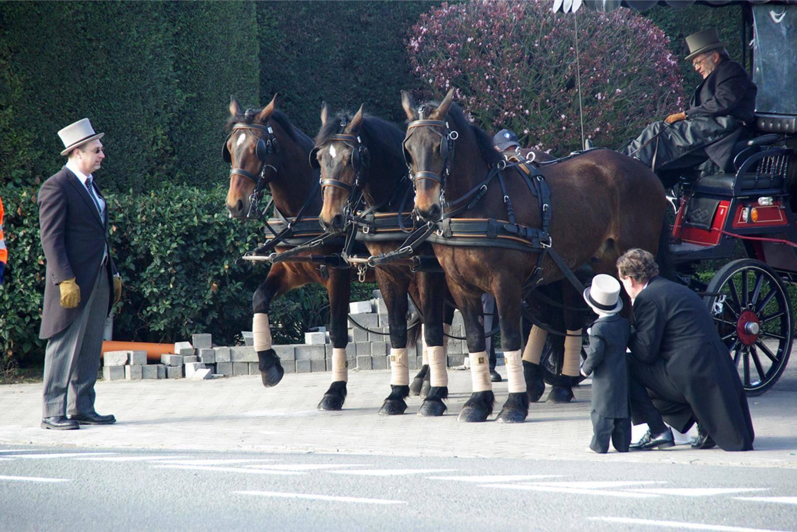 Manorhoeve - Paard en Koets - Vervoer - Ceremonievervoer - House of Weddings - 2