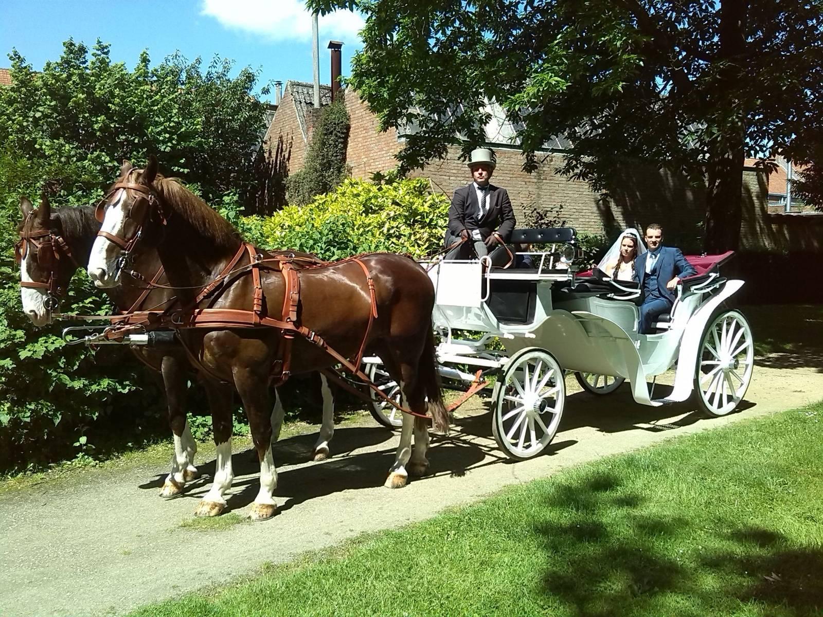 Manorhoeve - Paard en Koets - Vervoer - Ceremonievervoer - House of Weddings - 4