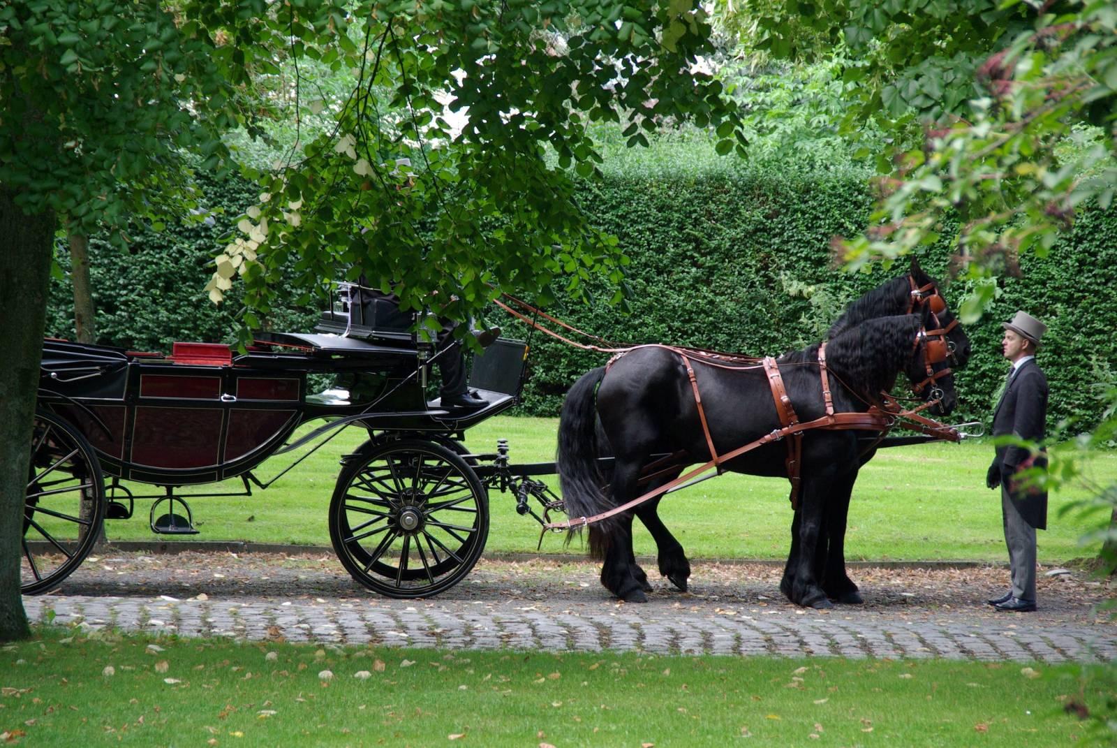 Manorhoeve - Paard en Koets - Vervoer - Ceremonievervoer - House of Weddings - 6