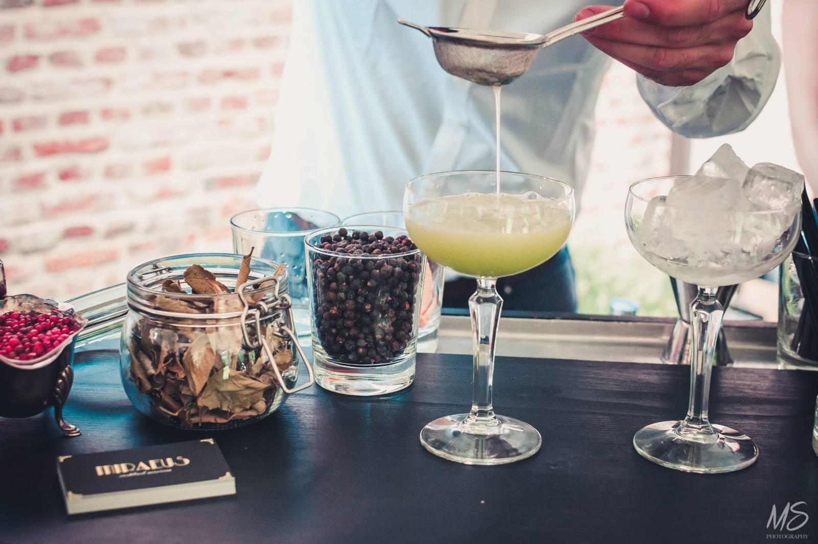 Miraeus - Cocktails - Mobiele Bars - House of Weddings - 6