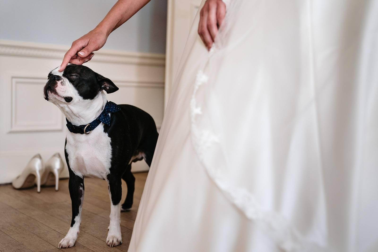 Yves Schepers Photography - Fotograaf - Huwelijksfotograaf - Trouwfotograaf - Bruidsfotograaf - House of Weddings - 18