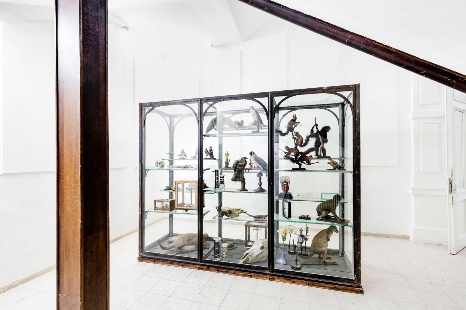 Zaal AthenA - Feestzaal - Trouwzaal - Antwerpen - House of Weddings - 4